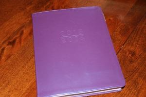 Slim Weekly Planner purchased at Barnes & Noble
